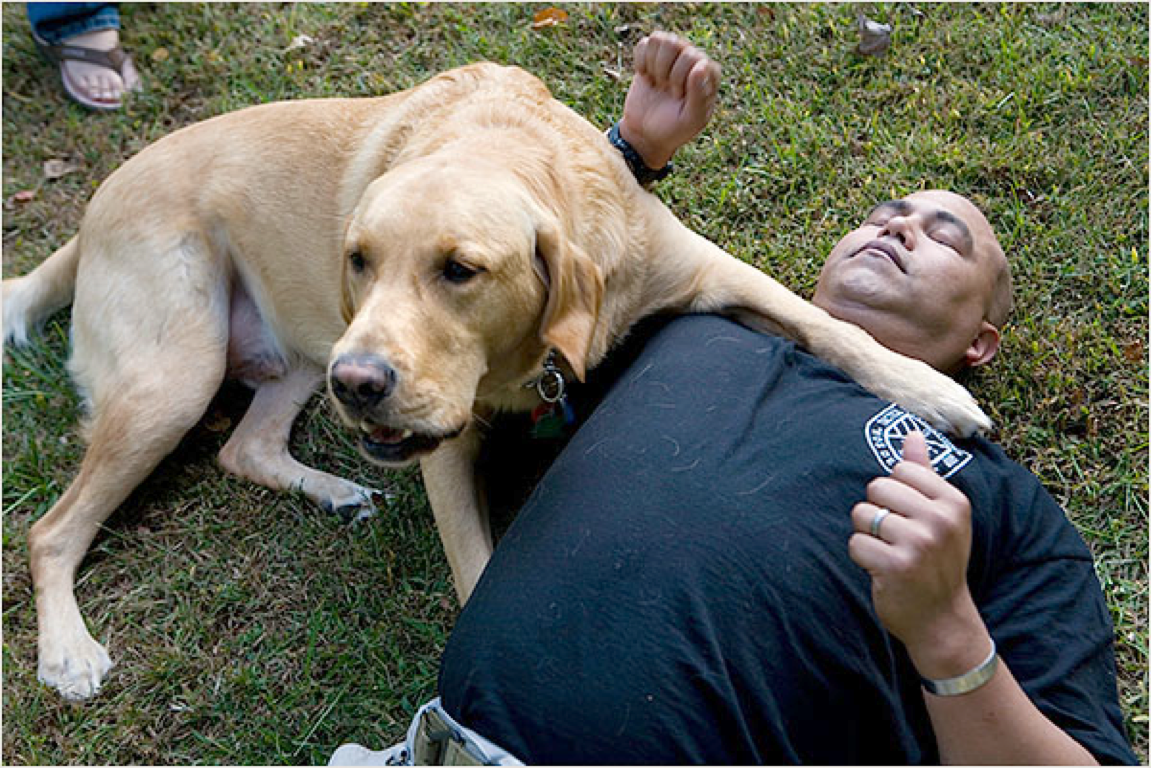 Large dog holding man having seizure in stable position with paw.